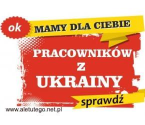 Mamy pracowników z Ukrainy, szybko i tanio